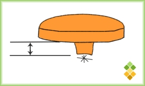 botoncuello